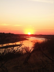 The Boteti River at sunset