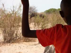 School pupil observing an elephant in the National Park