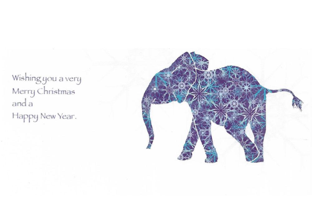 Merchandise - Elephants For Africa